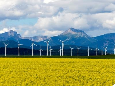 wind turbines in field near mountains